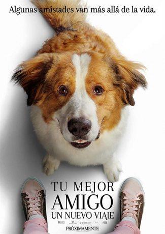 ماجراجویی یک سگ - A Dog's Journey